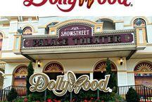 Dollywood trip