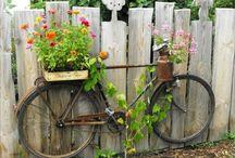 Kert / Ötletek kerthez, kertészkedéshez