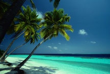Perfect Vacation Spots / by Nicole Lanier