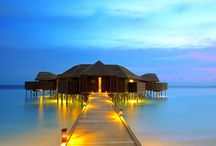 Maldives / Enjoy the glorious sunsets, flourishing aquatic life, and heart-stopping vision of the bluestwaters in the world at Maldives Island.