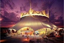Best of Orlando | Shows / BestofOrlando.com's Top 10 list for the best shows!