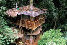 Costa Rica / Holiday!