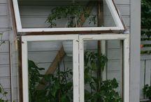 kasvihuone / greenhouse