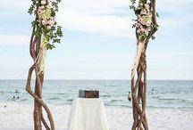 The Driftwood Beach Wedding Theme