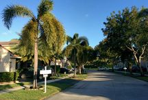 Miami / Travel and Adventure