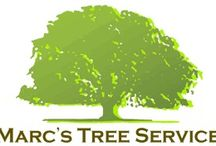 Marc's Tree Service / Professional and affordable tree services in Charlotte, NC.