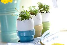 Easter/Spring ideas / by Sylvia Perkins