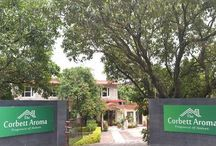 Hotels in Corbett - Jim Corbett Resorts / Hotels in corbett provides you details about corbett hotels and corbett resorts with best discounts for the booking of resorts in corbett call us now. http://www.hotelincorbett.in/