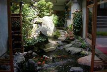 indoors gardens