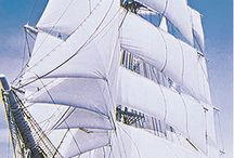 Tall Ships and small boats / All water craft