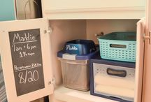 Organised Pets / Enjoy more time with your pets with these organising tips