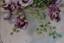 Floral, Fruit, Veg. & Garden
