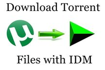 How to Download Torrent Files With IDM ?