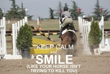 The life of the Equestrian