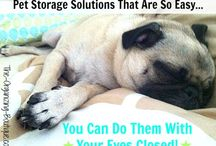 Organizing: For Pet Lovers / Pet have paperwork, toys, clothes, grooming tools, walking gear, travel accessories and more. Gotta stay organized! / by The Organizing Boutique