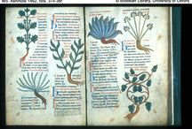 images of manuscripts - art, herbals, etc.
