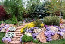 jardín en rocalla