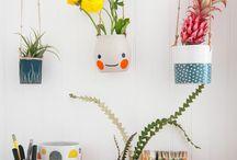 plantjes in huis