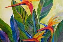 aves de el paraíso flor