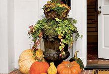 Fall decoration / by Caroline Thigpen