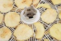 Dehydrating / by Cindy Porter