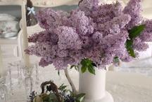 Flowers - ideas
