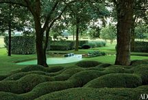 Hedges / Interesting hedge ideas.
