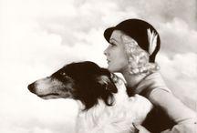 vintage pet photos / by Rhonda Vanderbeek