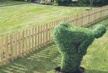 Gardening / by Sheron Hollon