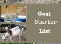 goat farms