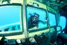 Enjoy Boat diving in Australia / Enjoy and learn boat diving in Australia with Lets Go Adventures.