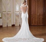 Rückenfreie Brautkleider / Feminin, sexy und sehr anmutig. Wir stellen Euch die schönsten Rückenfreien Brautkleider aus unserem Sortiment vor.