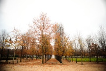 Paris in the Fall / by Paris Vacation Rentals - CobbleStay.com