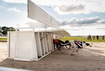 Greyhound Racing / Greyhound Racing but on a different level. Towcester Racecourse offers greyhound racing every Tuesday and Saturday with free admission.