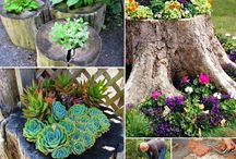 Tree Stump gardens