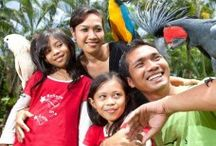 Zoo in Bali / All about zoo in Bali http://balitravelshop.com/Tour-Category/Zoo