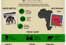 Infographics / Infographics Kiyodea Italia Onlus