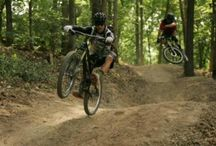 Trails / All the latest photos and updates on our awesome trail system