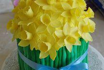 Cake Ideas / by Stephanie Johnson