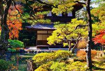 beautiful Japan....❤️