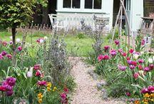 Fleurs et jardins, jardins et fleurs