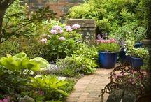 giardini / piante e fiori e giardini