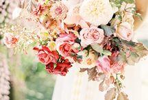 Bouquets / by Jen Rodriguez