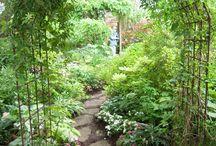 garden arches and trellis