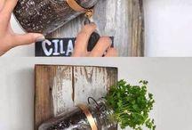 Plante dans des pots massons