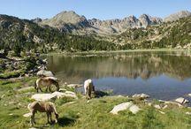 Travel - Andorra, Europe