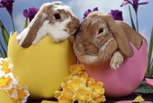Easter / by Claudia Gunetti