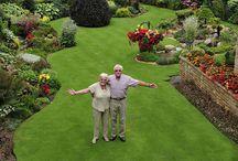 Pasajismo y jardines