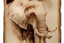 pyrograf słon