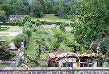 Les jardins remarquables en Alsace / Voltaire le disait bien : il faut cultiver son jardin. Le JDS le dit autrement : il faut profiter des jardins que les autres cultivent ! Dans la région, vous aurez de quoi faire, que vous aimiez les jardins à l'anglaise, à la française, les plantes vivaces ou les arbres géants.